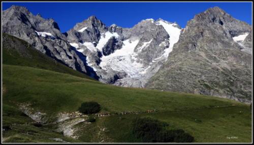 Lac d'Arsine 30-07-19 (12)